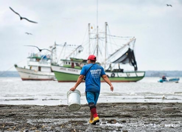 Ecuador's Fishing Industry